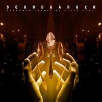 Soundgarden - Spoonman (Steve Aoki Remix)