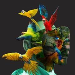 Meeting - Original Sound - Leo Baroso - 2021