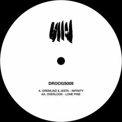 Gremlinz & Jesta - Infinity - DROOGS009