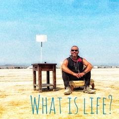 Renegade Burning Man 2021: What Is Life?