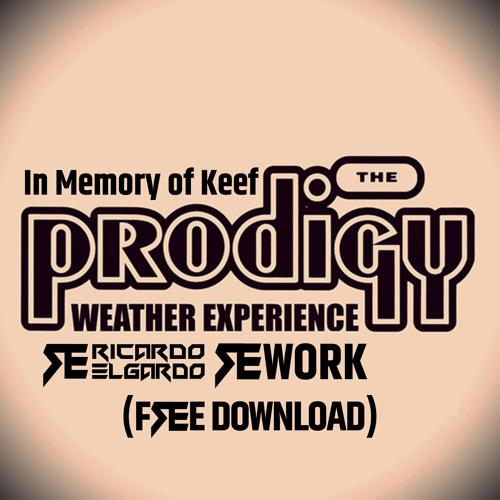 The Prodigy - Weather Experience (Ricardo Elgardo ReWork)