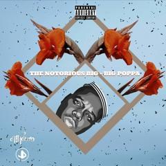 Notorious BIG - Big Poppa (Jean Dogan & D'Maduro Remix)