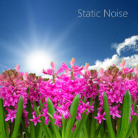 Static TV Noise for Sleep (Looped, No Fade) [feat. Static Noise Sound]