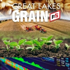 14June2021 Grain Noon Farm Report
