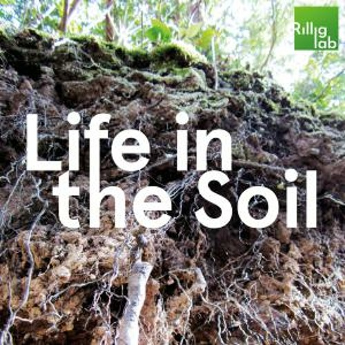 Sustainability – Healthy Soils, from Farms to Cities