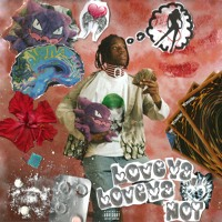 Love Ya, Love Ya Not (prod. ugly tremaine x herccutthelights)