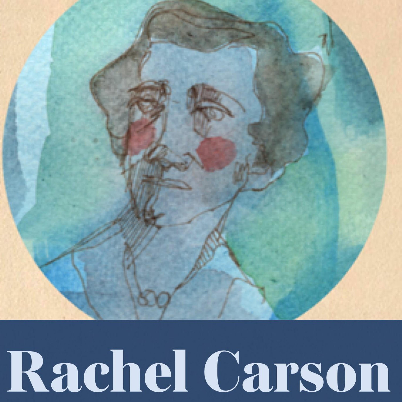 Rachel Carson (repris)