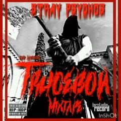 STRAY PSYCHOS-Zombie mimetici (Remix)