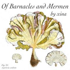 Of Barnacles and Mermen
