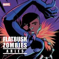 Flatbush Zombies - Aries