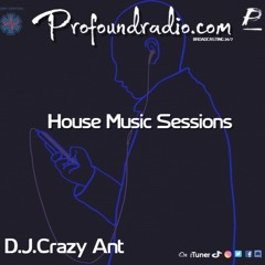 Profoundradio Mix #142 House Music