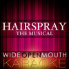 """I Know Where I've Been (From the Musical """"Hairspray"""") [Karaoke Version] [Original Broadway cast of Hairspray]"""
