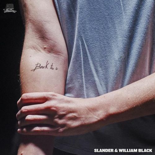 SLANDER & WILLIAM BLACK - Back To U x Who Do You Love x Fractures x Feel Good x Take Me x Cry(V2)