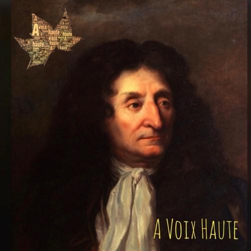 Jean De La Fontaine - Les Fables - La Cigale et la Fourmi- Yannick Debain