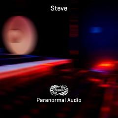 Steve - Gut Feel • Zebra Rec. [ZBREP009] • 2021 (snippet)