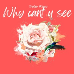 Freddy Money - Why Can't You See