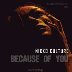 Nikko Culture - Because Of You (SLH Remix)