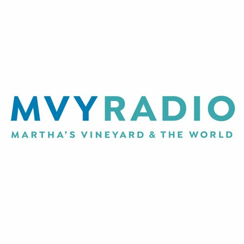 The Vineyard Current - Segment from May 3rd, 2020 - Ann Smith - ARTWEEK at HOME MV