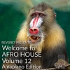 Welcome to Afro House Vol 12 (Amapiano Edition) Feb 2021