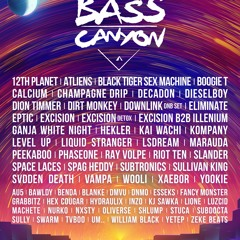 Road to Bass Canyon '21