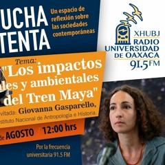 Programa Escucha Atenta. Impactos socioambientales del Tren Maya.