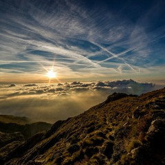 Heart Leadership 7 - Choosing the Courageous Path