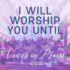 I Will Worship You Until