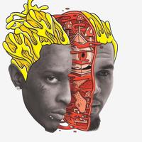 Chris brown ft Young Thug( GO CRAZY) Remix