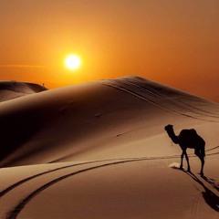 Drop To Sahara