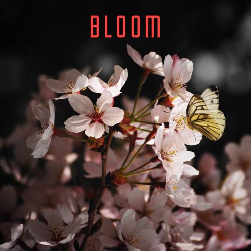 Bloom 604 – Rapture