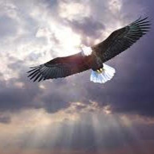 Free Like A Bird (demo)