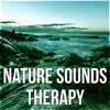 Spa Massage Music (Ocean Waves)