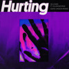 Hurting (Gerd Janson Remix) [feat. AlunaGeorge]