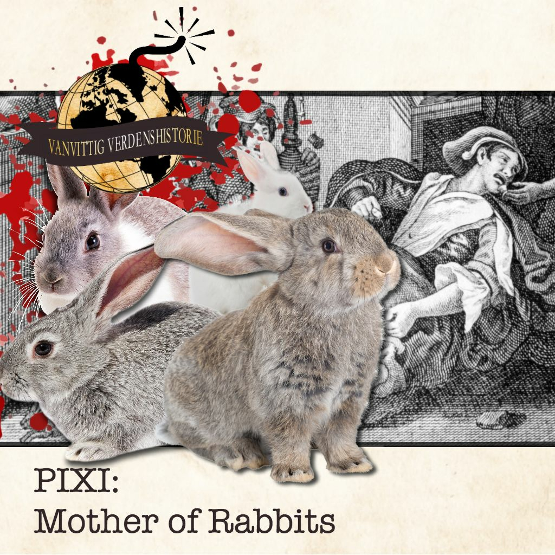 PIXI: Mother of Rabbits