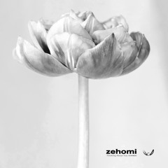 zehomi - Thinking About You (CFCNFREE03) FREE DOWNLOAD