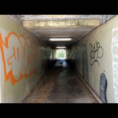 2020.12.31 Inside a Pedestrian Underpass Beneath a Railway Bridge