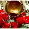 Download Siembra Menstrual y Rituales de Conexión con tu Ciclo Mp3