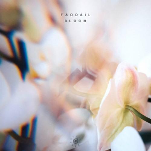 Faodail - Bloom
