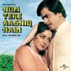 Ab Raaz Chhupana Mushkil Hai (Hum Tere Aashiq Hain / Soundtrack Version)