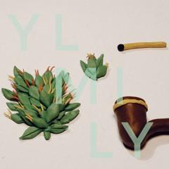 YL MI LY