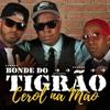 Download Bonde Do Tigrão - Cerol Na Mão(Sucesso de 2001)(DJ DUBAY BRAZIL) Tribal Tigrão Stronda Mix 2021 Mp3