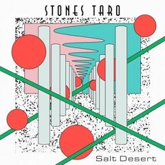 Stones Taro - Salt Desert EP