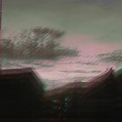 lil beet