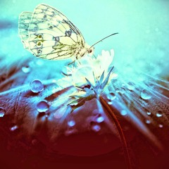 Natural Frequency - Butterfly Effect 146bpm F#min [Sample]
