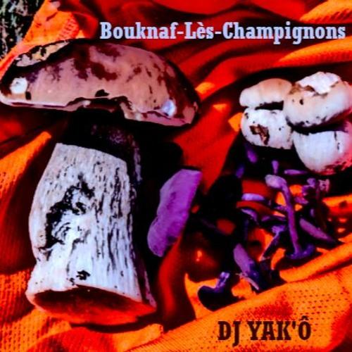 BOUKNAF-LES-CHAMPIGNONS