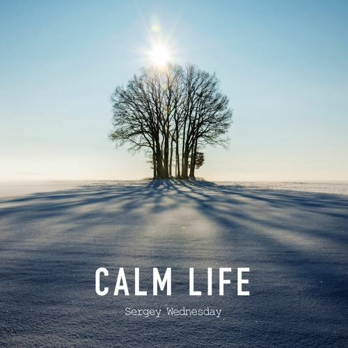 Sergey Wednesday - Calm Life (Original Mix)