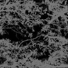 [ maze runner ]