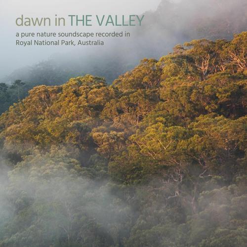 Dawn in the Valley - Royal National Park, Australia - Album Sample