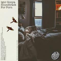 PREMIERE: Igor Gonya - Soundtrack For Porn [Magpie]