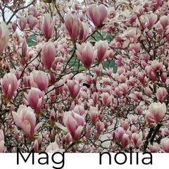 Mag  nolia
